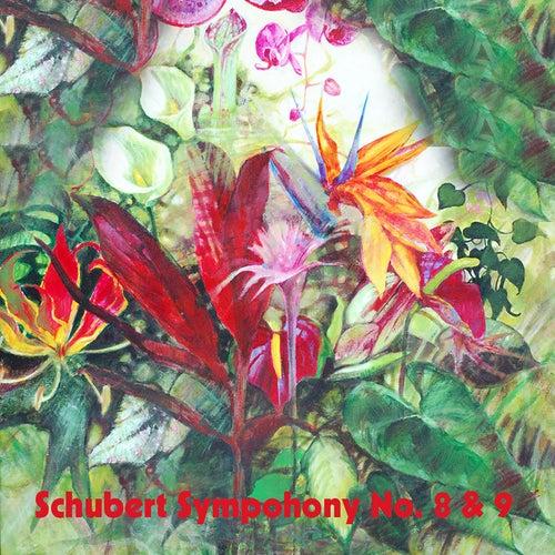 Schubert Sympohony No. 8 & 9 by Boston Symphony Orchestra