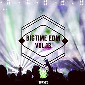 Bigtime EDM, Vol. 13 by Various Artists
