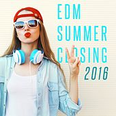 EDM Summer Closing: 2016 by Various Artists