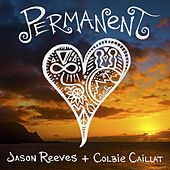 Permanent (feat. Colbie Caillat) by Jason Reeves
