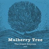 Mulberry Tree by Orient Express