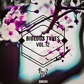 Bigeous Tunes, Vol. 12 by Various Artists