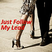 Just Follow My Lead von Various Artists