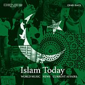 Islam Today by Tito Rinesi