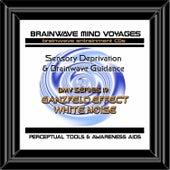 BMV Series 19 - Ganzfeld Effect White Noise - Sensory Deprivation by Brainwave Mind Voyages