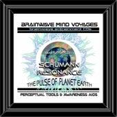 BMV Series 23 - Schumann Resonance - Brainwave Meditation by Brainwave Mind Voyages