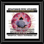 BMV Series 28 - Awakened Mind Brainwave Pattern - Meditational Aid by Brainwave Mind Voyages