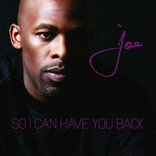 So I Can Have You Back by Joe