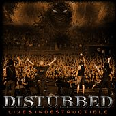 Live And Indestructible by Disturbed