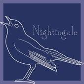 Op. 102 by Nightingale