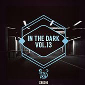In the Dark, Vol. 13 by Various Artists