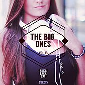 The Big Ones, Vol. 13 by Various Artists