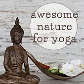 Awesome Nature for Yoga by Various Artists