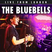 Live From London by The Bluebells