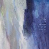 Postdoc Blues by John K. Samson
