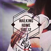 Walking Home, Vol. 12 by Various Artists