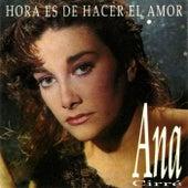 Hora Es de Hacer el Amor by Ana Cirre