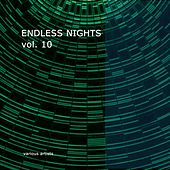 Endless Nights Vol.10 by Various Artists