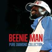 Beenie Man Pure Diamond Collection by Beenie Man