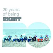 20 Years of Being Skint von Various Artists