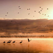 Lago by Lago