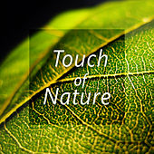 Touch of Nature – Peaceful Music for Total Relaxation, Easy Sleep, Pure Meditation, Spa, Pure Massage by Soothing Sounds