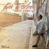 Por Tu Amor by Julio Camejo