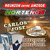 Reunion Entre Amigos Nortenos by Various Artists