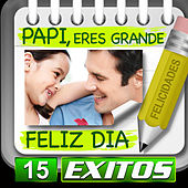 Papi Feliz Dia 15 Exitos by Various Artists