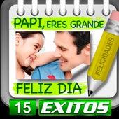 Papi Feliz Dia 15 Exitos by Various Artists