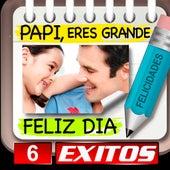 Papi Feliz Dia 6 Exitos by Various Artists