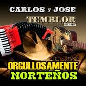 Orgullosamente Nortenos by Various Artists