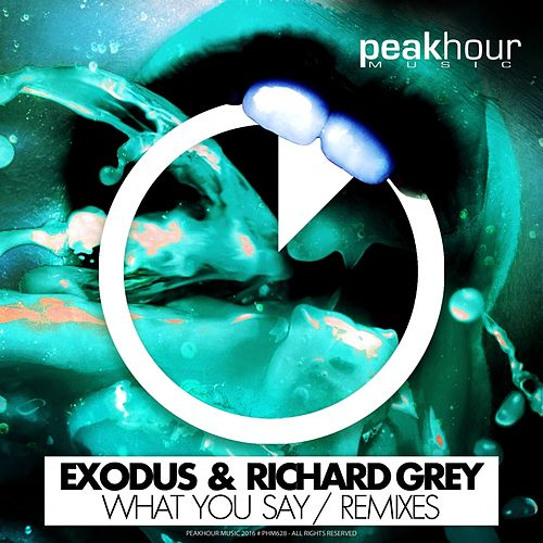 What You Say (Remixes) by Exodus