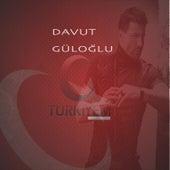 Türkiyem by Davut Güloğlu
