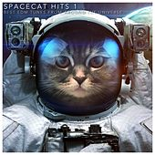Spacecat Hits 1 (Best EDM Tunes from Around the Universe) by Various Artists