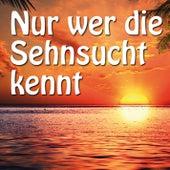 Nur wer die Sehnsucht kennt by Various Artists