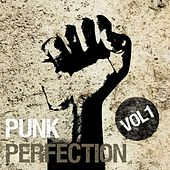 Punk Perfection, Vol. 1 by Various Artists