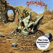 Stone Cold Sober (Bonus Track Edition) by Tankard