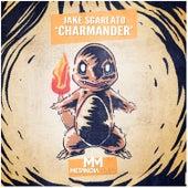 Charmander (Radio Mix) by Jake Sgarlato