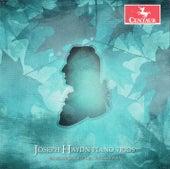 Haydn: Piano Trios, Vol. 7 by Mendelssohn Piano Trio