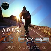 If It Flows It Goes, Vol. 2 by Various Artists