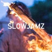 Slowjamz by Udachi