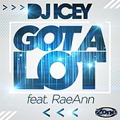 Got a Lot (feat. Raeann) by DJ Icey
