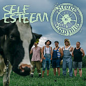 Self Esteem by Steve 'n' Seagulls