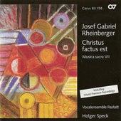 RHEINBERGER, J.: Sacred Music, Vol. 7 - SS Crucis in G major / 9 Advent-Motetten / In nativitate Domini in A major (Rastatt Vocal Ensemble) by Various Artists