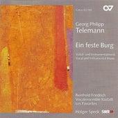 TELEMANN, G.: Ich danke dem Herrn / Ach wie nichtig, ach wie fluchtig / Singet dem Herrn ein neues Lied (Rastatt Vocal Ensemble) by Various Artists