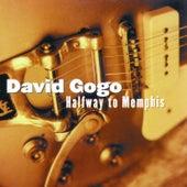 Halfway to Memphis by David Gogo