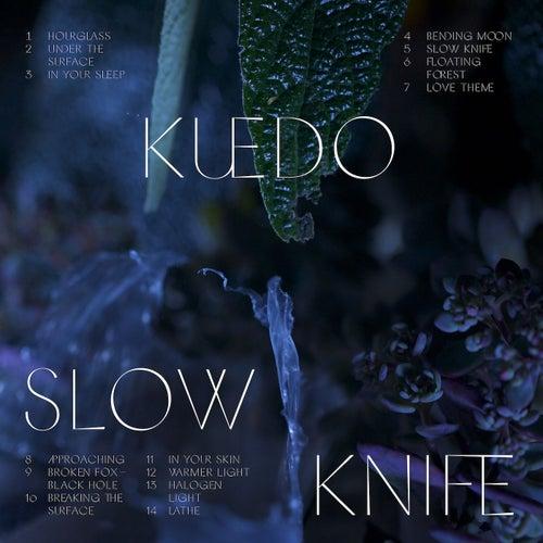 In Your Sleep by Kuedo