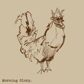 Morning Glory by Morning Glory