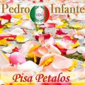 Imprescindibles (Pisa Petalos) by Pedro Infante